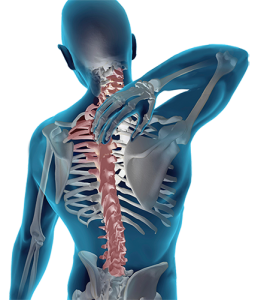 Bond Thomas Chiropractic- sports injury spine